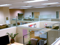 Custom Interior Office Glass and Windows